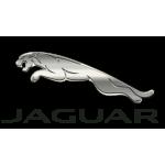 Штатные Магнитолы Jaguar